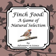 This FUN game is designed to be a whole-class activity to model natural selection. Students will get to play different kinds of finches and compete against each other for food cards that you place around the classroom.  By the end of the activity, students will see that the animals that are best adapted to their environment will be more likely to survive and reproduce. Those organisms that are not suited to their environments will become extinct.  $