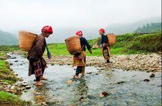 Les Dao rouges à Ta Phin. Pour en savoir plus : https://www.amica-travel.com/vietnam-sites-a-decouvrir/nord-vietnam/sapa Crédit Photo : Sayid Budhi