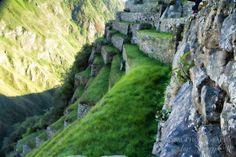 Machu Picchu a Decade Later - Green terraces