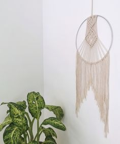 This item is hand woven with a natural, cotton rope. For this product multiple colors are available. Every piece is made to order within 2 business days. Macrame Wall Hanging Diy, Macrame Plant Hangers, Plants For Hanging Baskets, Macrame Design, Cotton Rope, Modern Boho, Fun Crafts, Hand Weaving, Group