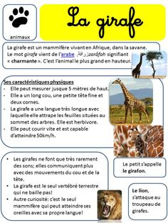 AFRIQUE - LECTURES DOCUMENTAIRES SUR LES ANIMAUX French Language Lessons, French Lessons, French Teacher, Teaching French, French Education, Kids Education, How To Speak French, Learn French, Language Immersion
