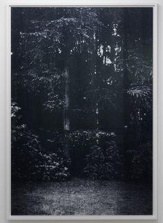 Wolfgang Tillmans  Galerie Chantal Crousel, Paris, 2008  installation views by Kleinefenn @ ifrance.com