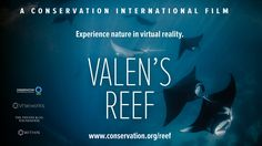 Valen's Reef (360 video)