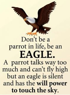 Dont be a parrot in life be an eagle. A parrot talks way too much but cant fly h. - Dont be a parrot in life be an eagle. A parrot talks way too much but cant fly high but an Eagle is - Apj Quotes, Life Quotes Pictures, Real Life Quotes, Life Lesson Quotes, Reality Quotes, Words Quotes, Status Quotes, Positive Quotes For Life, Sayings