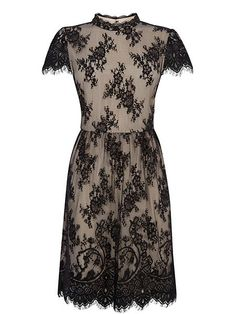 Oasis Gothic Lace Dress