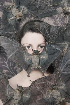 Caryn Drexl anim, vampir, caryn drexl, witch, bats art, dark art, batti, arti pic, thing
