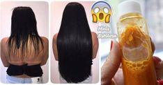 shampoo de cenoura caseiro cabelo crescer