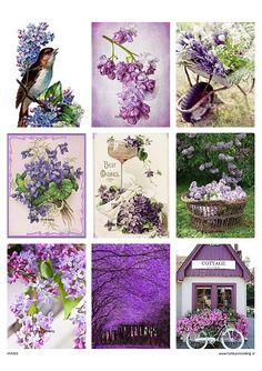 vintage knipvel 20 purple