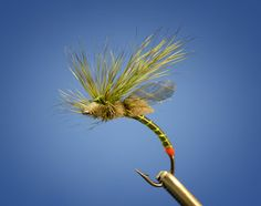 Fly Fish Food -- Fly Tying and Fly Fishing : Drakes -- Fripple Style
