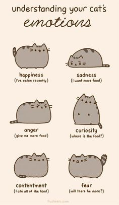 20 Reasons Why #Pusheen The Cat Would Make The Perfect Boyfriend | Her Campus #food #cats