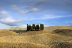 This group of trees is probably the most photographed spot in the province of Siena, Tuscany. I have shot it many times. It is always interesting. Photograph by  Renato R.