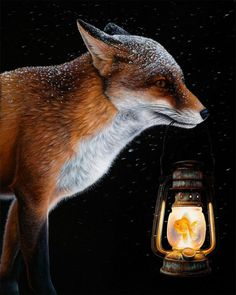 Creating stunning, realistic depictions of animals and objects, Canadian artist Jacub Gagnon includes surreal elements within his compositions, taking us out of… Animal Art, Canadian Artists, Surreal Photos, Artist, Painting, Surrealism, Animal Illustration, Animal Paintings, Fox Art