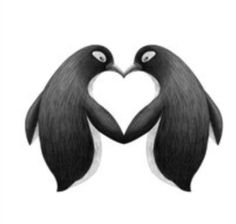 Faerie fire Tattoo by Tenrex on DeviantArt Pinguin Drawing, Pinguin Tattoo, All About Penguins, Cute Penguins, Penguin Art, Penguin Love, Animals And Pets, Baby Animals, Cute Animals