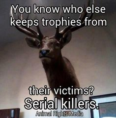 Hunting for meat and using the fur and the meat is manly. Hunting for sport just to put a trophy on a wall is just plain childish, cruel, and ignorant. Vegan Memes, Vegan Quotes, Vegan Facts, Trophy Hunting, Why Vegan, Stop Animal Cruelty, Animal Testing, Animal Welfare, Serial Killers