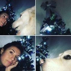 #richellomio #merrychristmas #finalmenteènatale #dog #onelove #puroamore #roma