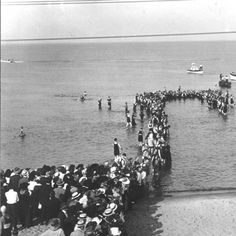 I.B.S.A. (International Bible Students Association, later became known as Jehovah's Witnesses) Mass Baptism in Lake Erie Photograph :: Ohio Memory Collection (1919)