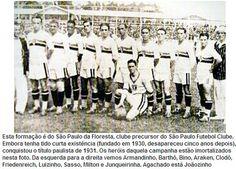 1931+-+s%C3%A3o+paulo+da+floresta.jpg (500×360)