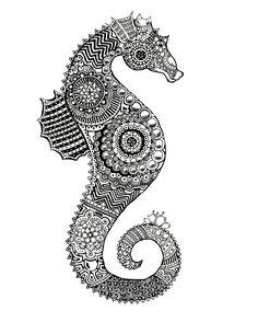 Sea Horse Drawing. Zentangle. Traditional. Ink on Bristol. Janelle Dimmett 2016. www.janelledimmett.com.