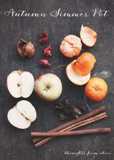 Easy Autumn Simmer Pot - make your house smell glorious all season long!