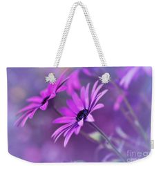 Misty Young Daisies by Kaye Menner Weekender Tote Bag x by Kaye Menner. The tote bag includes cotton rope handle for easy carrying on your shoulder. Weekender Tote, Cotton Rope, Bag Sale, Tote Bags, Daisy, Gift Ideas, Gifts, Photography, Busy Bags