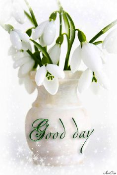 3191 best good morning gifsgood morning images on pinterest good 0160e134c157c2fxlf 534800 good morning greetings weekend greetings flower mightylinksfo