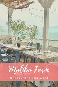 Malibu Farm Restaurant and Cafe: Farm to Table Food with the Best Views in Malibu! babies flight hotel restaurant destinations ideas tips Travel Advice, Travel Guides, Travel Tips, Cool Places To Visit, Places To Travel, Travel Destinations, California Travel, Malibu California, Malibu Farm