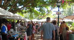 Blaauwklippen Wine Farm Sunday Family Market in Stellies  Awesome day out with the family, for local goods, food, honey, crafts, activities or good old wine! Lots to do for the kiddies too