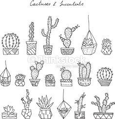 Clipart vectoriel : Cactuses, succulents.