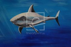 lieber Hai - Kinderzimmer Hai, Fighter Jets, Animals, Drawing Pictures, Print To Canvas, Painting Art, Animales, Animaux, Animal
