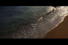 wave Waves, Celestial, Ocean Waves, Beach Waves, Wave