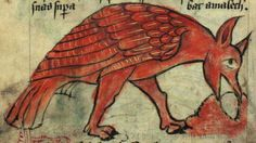 Medieval Bestiary : Ostrich...though this whole site is fantastic.