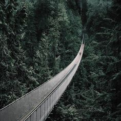 Suspended Above it All . . . . . #capbridge #explorebc #northvancouver #wanderlustwednesday #westcoast #pnw #vancouver #vancity #explorecanada #vancouverisawesome #dailyhivevan #thegreatoutdoors #canada #cascadiaexplored #ourplanetdaily #tourcanada #pnwonderland #thegreatoutdoors #vancityhype #yvr #capilanosuspensionbridge #travel #explore #adventure #roamtheplanet #imagesofcanada #travelstoke #explorevanNS #doyoutravel #rainforests