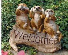 Classic Cute Meerkat Welcome Home Garden Statue Exotic Hear No Evil See No Evil Speak No Evil by XoticBrands Statue. $38.34. The Meerkat Menagerie Welcome Sculpture Guests will know you re eager for their visits when this adorable trio of meerkats welcomes them to your own manor! Demonstrating the adage of see no evil, hear no evil, speak no evil, this fun-loving work of decorative art is sculpted 360-degrees. Cast in quality designer resin, our exclusive meerkat sculpture is ...