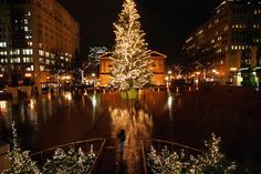 Find that someone special and go for a glowing stroll through Pioneer Square.