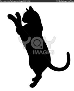 Silhouettes of cats | Royalty Free Image of Cat Illustration Silhouette
