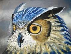 Este exemplar desta espécie, tem as suas penas num tom azul/anilado o que o torna lindo.