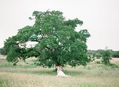 May Wedding   Lady Bird Johnson Wildflower Center   Stephanie Hunter Photography
