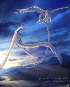 Soaring Dragons