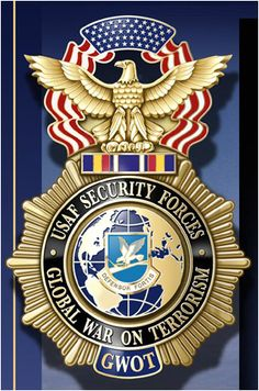 would LOVE to have one of these ...   USAF Security Forces GWOT badge