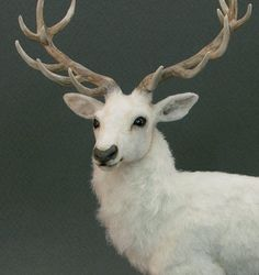 Wow! needle felting deer