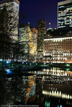 NYC. Central Park south east corner at night