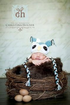Wood Branch Owl Bird Nest Newborn Baby Photography Prop