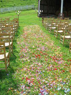 mixed petal for the aisle, Shady Grove Gardens