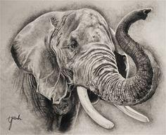 elephant head drawings - Google Search