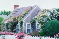 This is how I see my dream house just cute cozy and perfect :)