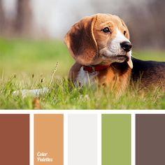 Warm reddish-brown hues are harmoniously combined with green and gray. This palette is perfect for decoration of a bedroom or a living room..