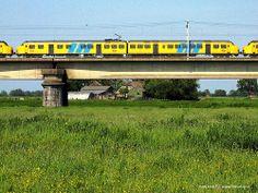 Dutch Railways yellow and blue on the railway bridge near Culemborg, The Netherlands
