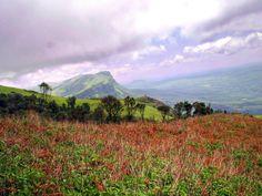 Mullayanagiri hills, Karnataka Fictional World, Karnataka, Incredible India, Places To Visit, Asia, The Incredibles, Check, Nature, Travel