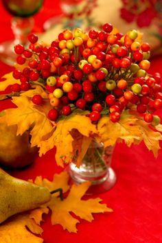 What I Like About Fall   Cranberries can be really pretty   Fall Colors