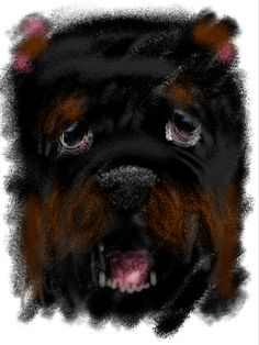 Rottweiler. Finger Ipad painting. By Chano Calvo.